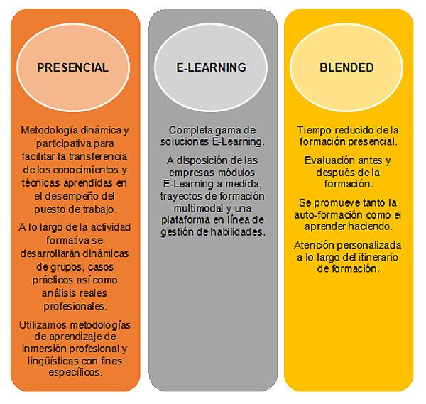 Servicios a la empresa: presencial, e-learning, blended